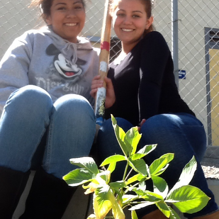 Planting trees on Earth Day