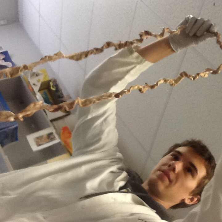 Anatomy and Physiology Class